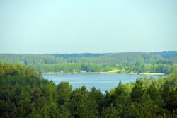 Labanoro girios apžvalgos bokštas -